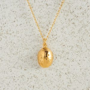 Necklaces-Charm Pendants-Ladybird-Gold